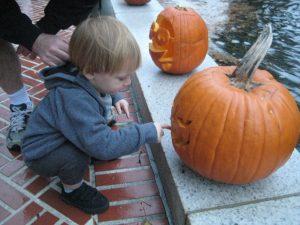 August Kirchdoerffer checks out pumpkin carving