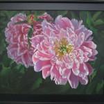 Linda Lam's oil, Pink Peonies