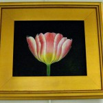 Sandra Cerchio's oil on black canvas, Tulip