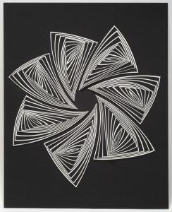 Elizabeth Gregory Gruen's Black & White Star Out