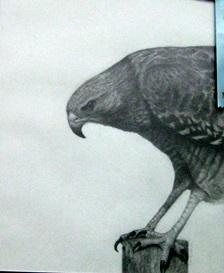small, Danielle Winkler's pencil work, Untitled (Butler)