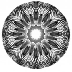 Carol Nussbaum's Porcupine Mandala