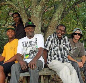 squared-random-test-reggae-1